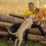 Ana trabalha há seis anos em prol dos animais através da Apama (Foto: Apama / Divulgação)