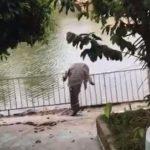 crocodilo-avistado-em-cidade-do-estado-mexicano-de-tabasco-apos-inundacoes-1605621419647_v2_450x450