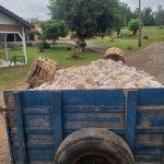 Frangos morreram de calor na localidade de Forqueta, em Arroio do Meio (Foto: Divulgação)