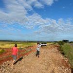 Acesso de produção de arroz em Amoras (Divulgação)