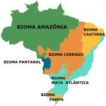 biomasbrasileiros-cke