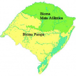 Bioma Pampa e Mata Atlântica