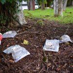 Um dos problemas no local, além da segurança, é o acúmulo de lixo deixado no pátio (Foto: Gabriela Hautrive)
