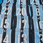 Foto: Grêmio / Divulgação