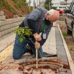 Projeto Arboriza Teutônia soma mais 22 mudas de árvores plantadas