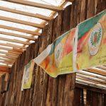 Acampamento Farroupilha de Lajeado em 2021 conta com 15 ranchos, mesmo número de 2019 (Foto: Pietra Darde / Divulgação)
