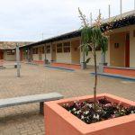 Árvores foram plantadas no pátio da escola
