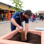 SecreDia da Árvore é marcado com o plantio de diversas espécies na escola Irmãs Pivatto de Bom Retiro do Sultária Carlos fez o plantio de uma árvore